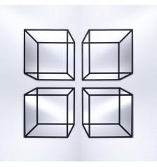 Delusion Mirror