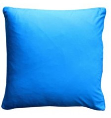 Blue Frog Cushion